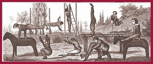 1800 Gymnastics
