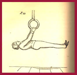 Front Lever 1862