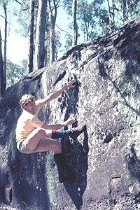 Cais at Toohet's Forest 1974
